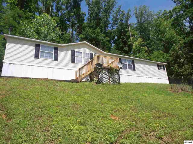 1000 Lilac Way, Cosby, TN 37722 (#210502) :: SMOKY's Real Estate LLC