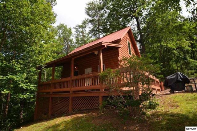 1005 Ski View Lane, Sevierville, TN 37876 (#210533) :: Colonial Real Estate