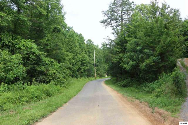 Yellow Breeches Rd, Cosby, TN 37722 (#210556) :: SMOKY's Real Estate LLC