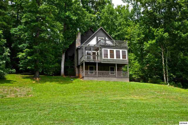 314 Settlers View Rd, Townsend, TN 37882 (#210587) :: SMOKY's Real Estate LLC