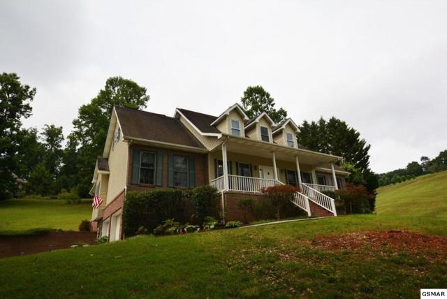 3229 Autumn Bentwood, Kodak, TN 37764 (#210598) :: Colonial Real Estate