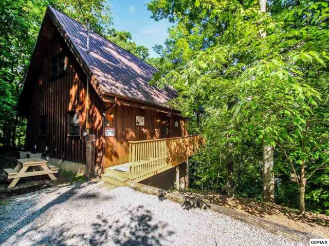 "1182 Tanrac Trail ""Bear Country C, Gatlinburg, TN 37738 (#210611) :: Colonial Real Estate"
