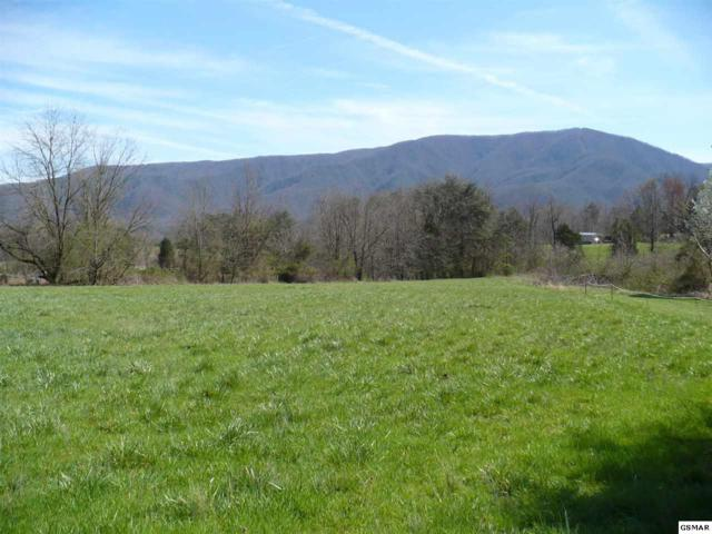 Lot 2-A Off Hatcher Mountain Road, Sevierville, TN 37862 (#210617) :: Tennessee Elite Realty
