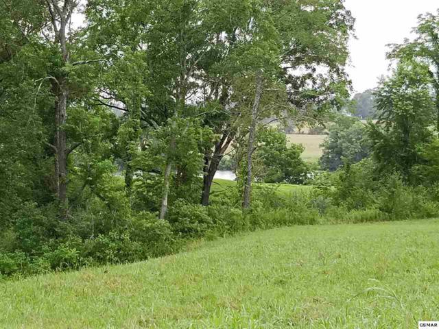 9730 Tranquility Lane, Kodak, TN 37764 (#210669) :: SMOKY's Real Estate LLC