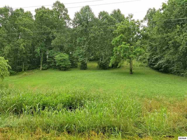 2601 Clyde Ed Road, Kodak, TN 37764 (#210675) :: SMOKY's Real Estate LLC