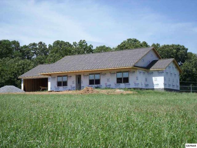 1008 Southwind Circle, Dandridge, TN 37725 (#210682) :: SMOKY's Real Estate LLC