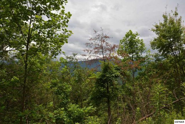 Lot 63 Pinnacle Vista Road, Gatlinburg, TN 37738 (#210705) :: The Terrell Team