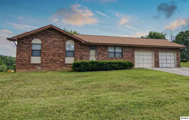 1250 Old Newport Highway, Sevierville, TN 37862 (#210710) :: SMOKY's Real Estate LLC