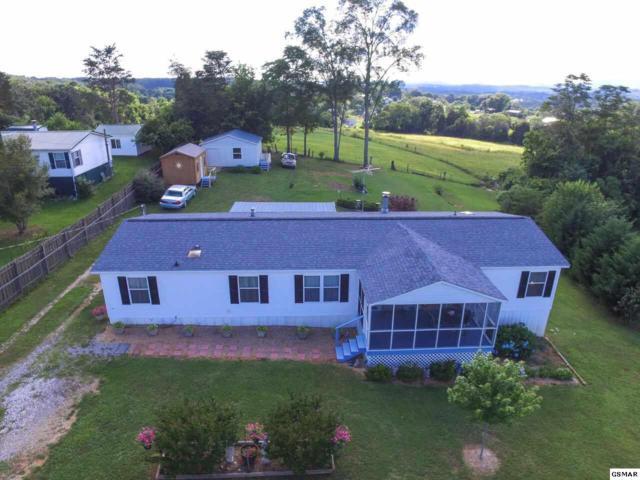 132 Kerri Drive, Strawberry Plains, TN 37871 (#210716) :: SMOKY's Real Estate LLC
