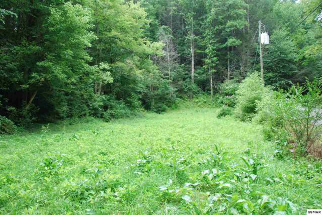Locust Locust Ridge 26.79 Acres, Sevierville, TN 37876 (#210808) :: The Terrell Team