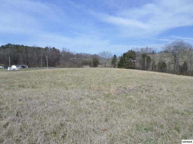 Lot 55R Majestic Circle, Dandridge, TN 37725 (#210819) :: Four Seasons Realty, Inc