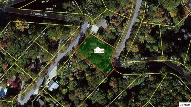Lot 30 S Tamins Drive, Gatlinburg, TN 37738 (#210828) :: Four Seasons Realty, Inc