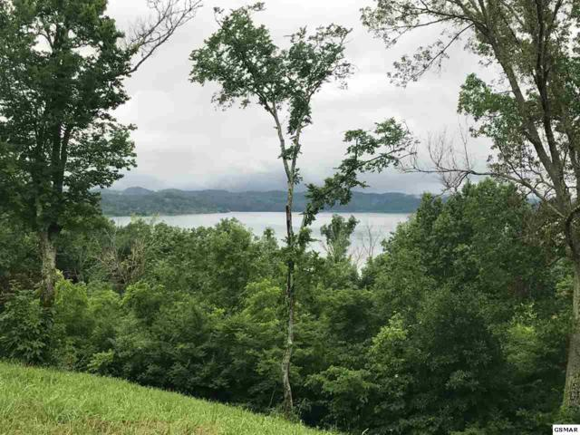 Lot 5 Waterford Way, Newport, TN 37821 (#210843) :: Billy Houston Group