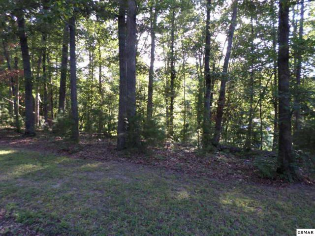 Lot 3 Cobblestone Lane, Dandridge, TN 37725 (#210985) :: Billy Houston Group