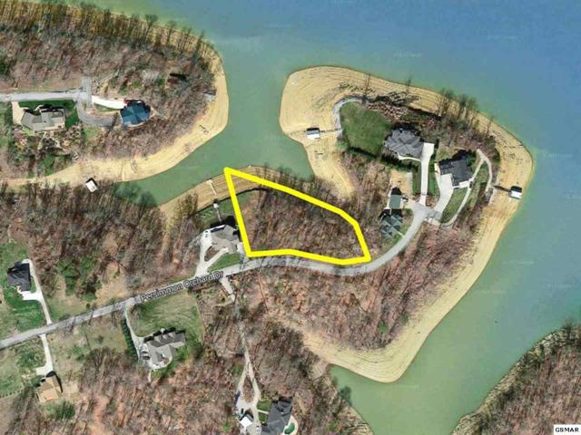 Lot 7 Persimmon Orchard Drive, Dandridge, TN 37725 (#211008) :: Billy Houston Group