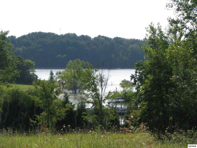 Lot's 69 & 70 Brookview Dr., Dandridge, TN 37725 (#211056) :: Colonial Real Estate