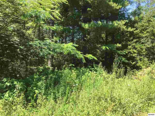 Lot 161 Green Meadow Dr., Sevierville, TN 37876 (#211065) :: Billy Houston Group