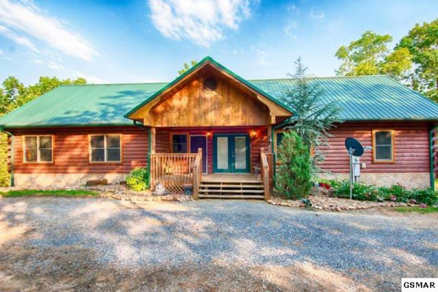 3725 Island View Rd, Sevierville, TN 37876 (#211158) :: Billy Houston Group