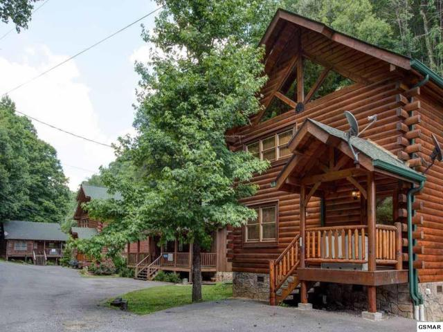 361 Caney Creek Rd, Pigeon Forge, TN 37863 (#211232) :: Billy Houston Group