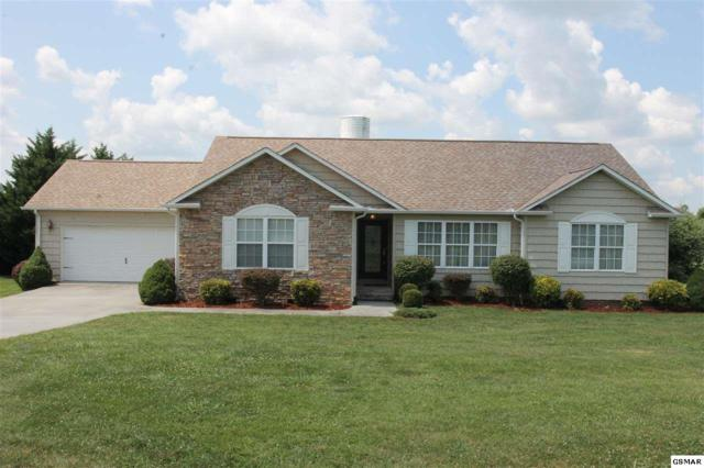 1359 Hodges Bend Rd, Sevierville, TN 37876 (#211244) :: Billy Houston Group