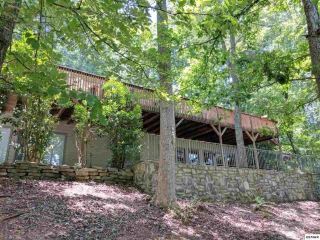 450 Kelly Hills Rd., Sevierville, TN 37876 (#211256) :: Billy Houston Group