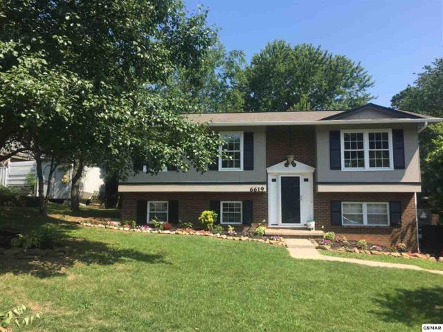6619 Trousdale Rd, Knoxville, TN 37921 (#211257) :: Billy Houston Group