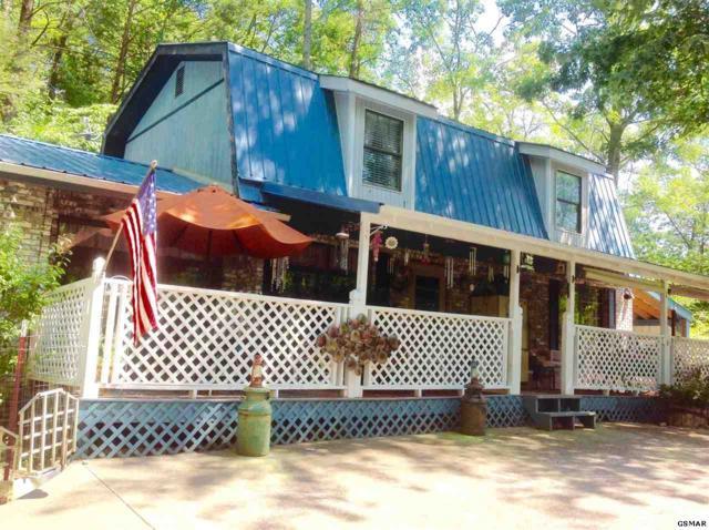 408 Hemlock Lane, Sevierville, TN 37876 (#211265) :: Colonial Real Estate