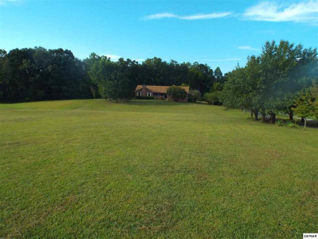 216 New Center Road, Sevierville, TN 37876 (#211340) :: The Terrell Team