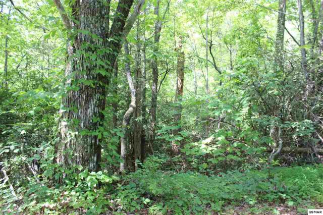 Lot 146 Ridgehigh Pass, Sevierville, TN 37876 (#211361) :: Colonial Real Estate