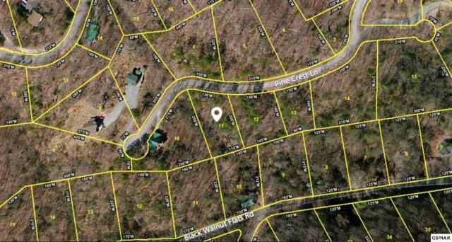 Lot 0011 Pine Crest Ln, Sevierville, TN 37862 (#211381) :: Colonial Real Estate