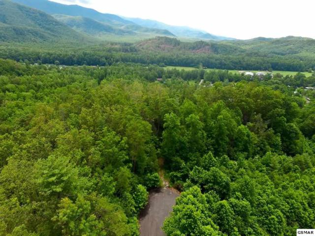 Lot 35 Sonshine Ridge Rd, Cosby, TN 37722 (#211388) :: Billy Houston Group