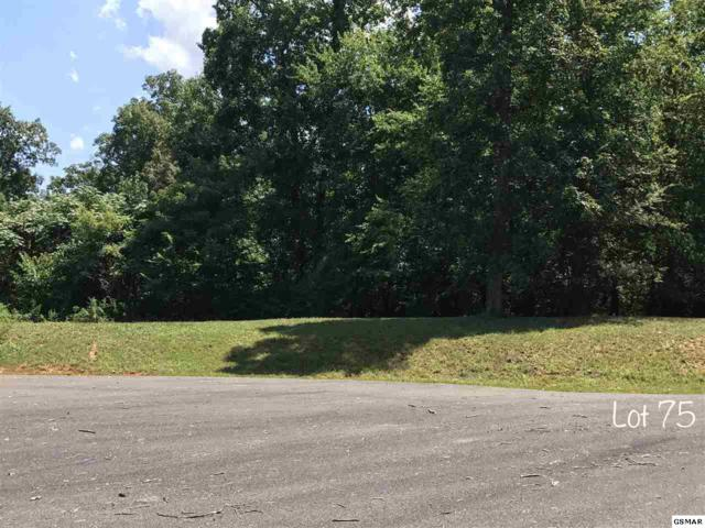 Oneil Rd Lot 75, Cosby, TN 37821 (#211496) :: The Terrell Team
