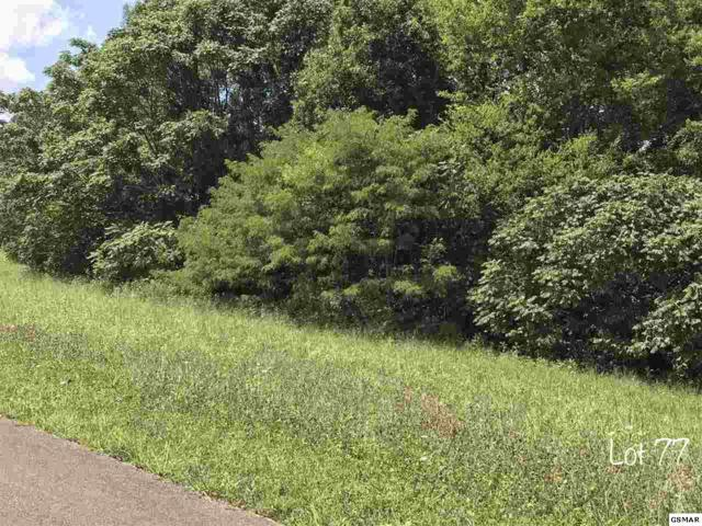 Oneil Rd Lot 77, Cosby, TN 37821 (#211503) :: Billy Houston Group