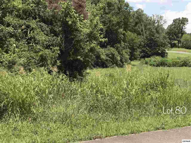 Oneil Rd Lot 80, Cosby, TN 37821 (#211505) :: Billy Houston Group