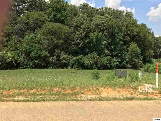 Oneil Rd Lot 81, Cosby, TN 37821 (#211506) :: SMOKY's Real Estate LLC