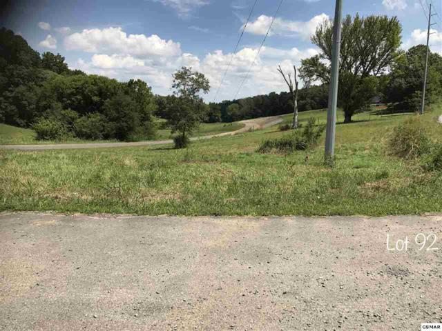 Oneil Rd Lot 92, Cosby, TN 37821 (#211513) :: SMOKY's Real Estate LLC