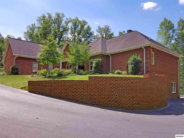 225 Owassa Drive, Newport, TN 37821 (#211526) :: SMOKY's Real Estate LLC