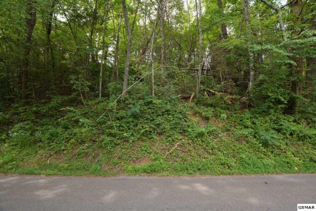 Lot 3 Cole Ln Ponderosa, Gatlinburg, TN 37738 (#211528) :: Billy Houston Group