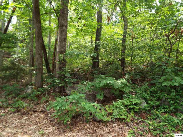 Lot 18 Quail Way, Wears Valley, TN 37862 (#211563) :: The Terrell Team