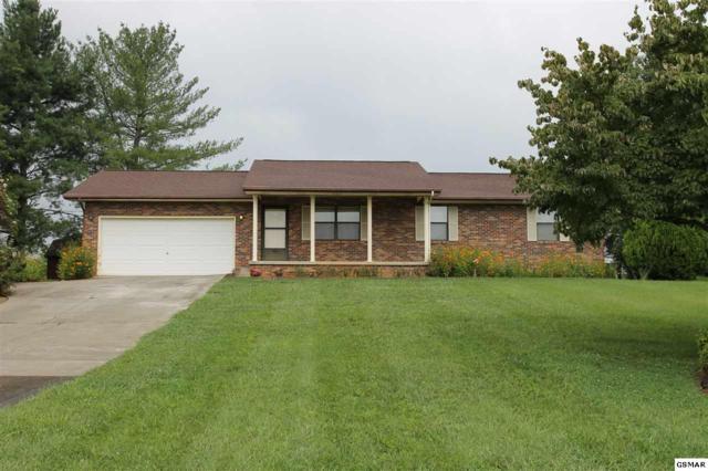 224 Goldenrod Drive, Seymour, TN 37865 (#211582) :: SMOKY's Real Estate LLC