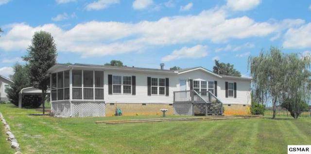 1637 Parton Cir, Seymour, TN 37865 (#211594) :: SMOKY's Real Estate LLC