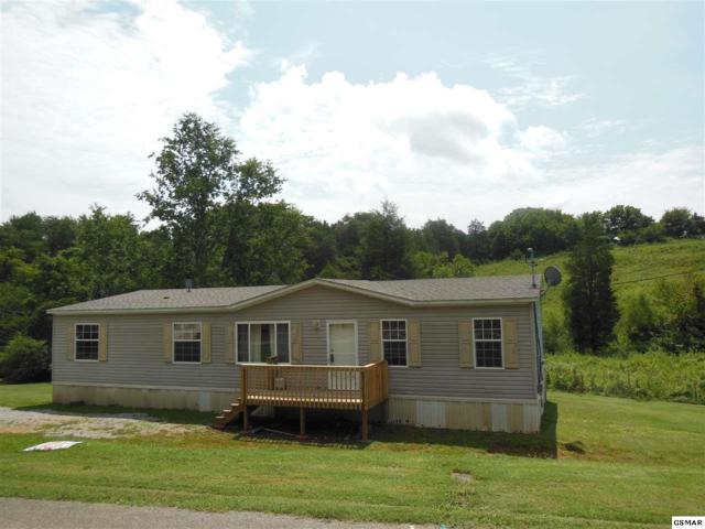 225 Newell Station Cir, Seymour, TN 37865 (#211635) :: SMOKY's Real Estate LLC