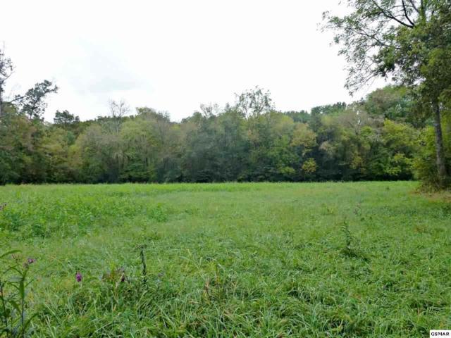 Tract IV Dalton Rd., Dandridge, TN 37725 (#211654) :: SMOKY's Real Estate LLC