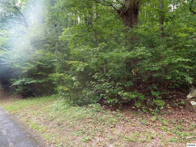 Parcel 003.04 Timber Lake Way, Cosby, TN 37722 (#211666) :: SMOKY's Real Estate LLC