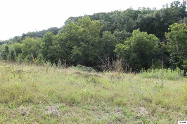 Lot 17 River Vista Cr, Sevierville, TN 37876 (#211680) :: SMOKY's Real Estate LLC