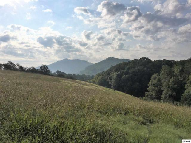 Lot 11 Dayne, Sevierville, TN 37876 (#211714) :: Colonial Real Estate