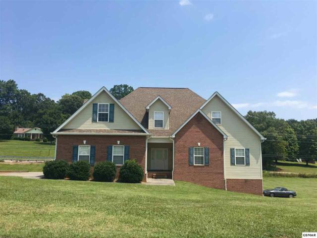 142 Raspberry  Drive, New Market, TN 37820 (#211738) :: Colonial Real Estate