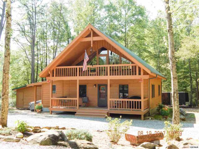 352 Warrior Ridge Way, Cosby, TN 37722 (#211750) :: Colonial Real Estate