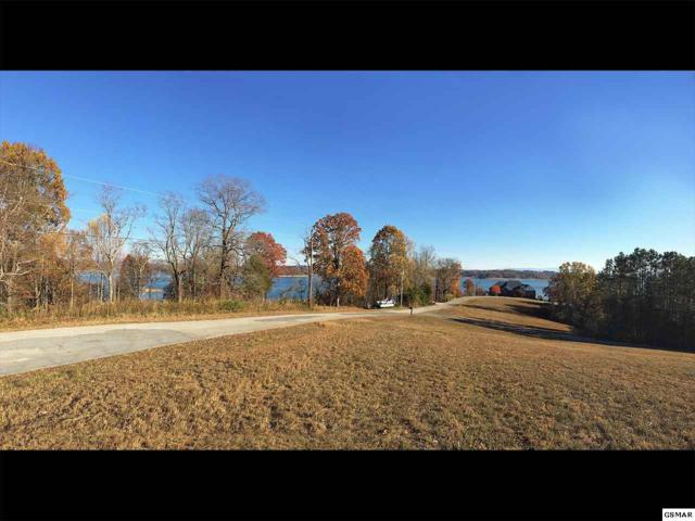 Lot 12R Alberts Cove, Rutledge, TN 37861 (#211753) :: Colonial Real Estate