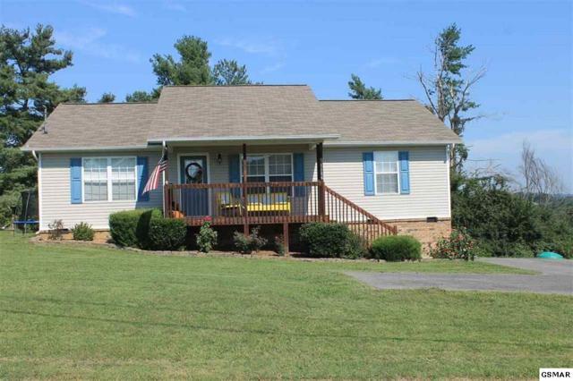 1156 Barker Drive, White Pine, TN 37890 (#211763) :: Colonial Real Estate